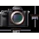 Sony Alpha 7r II + 25mm