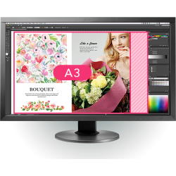 Eizo Coloredge CS 240