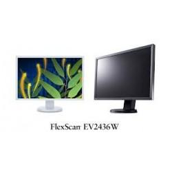 Eizo FlexScan EV 2450W